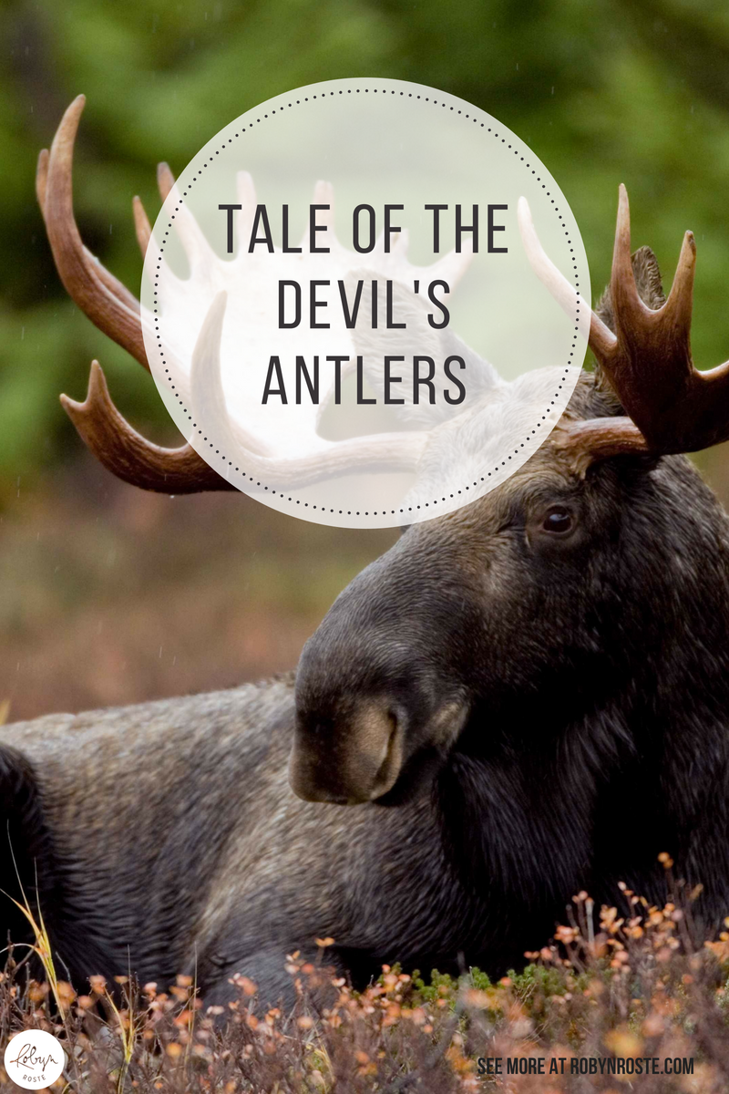 The Tale of the Devil's Antlers: if a bull moose is castrated, he sheds his antlers and immediately grow a new set of deformed ones, which will never shed.